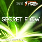 Pips-in SAUER & TROGER Secret Flow